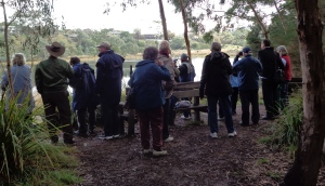 Manningham Seniors at Banyule Flats