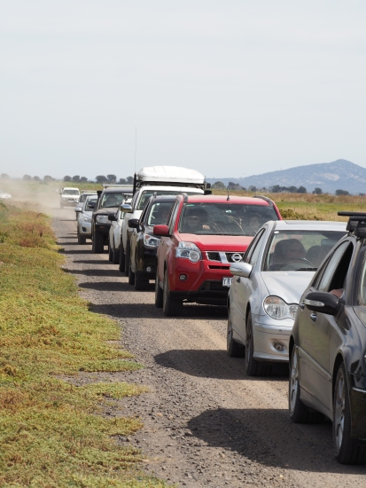 Vehicles in convoy at the WTP. Photograph by Deb Oliver