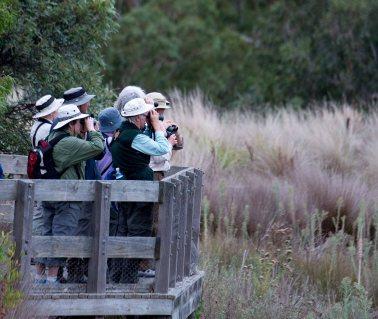 Birdwatchers. Photograph: Marilyn Ellis
