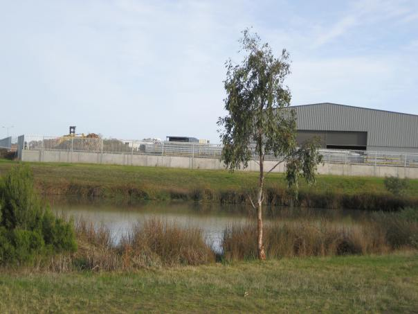 Pond within Industrial zone. Photo by Diane Tweeddale