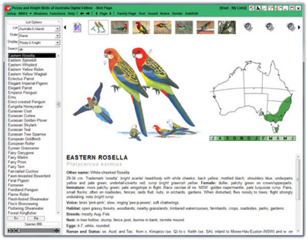 Example Bird Guide page