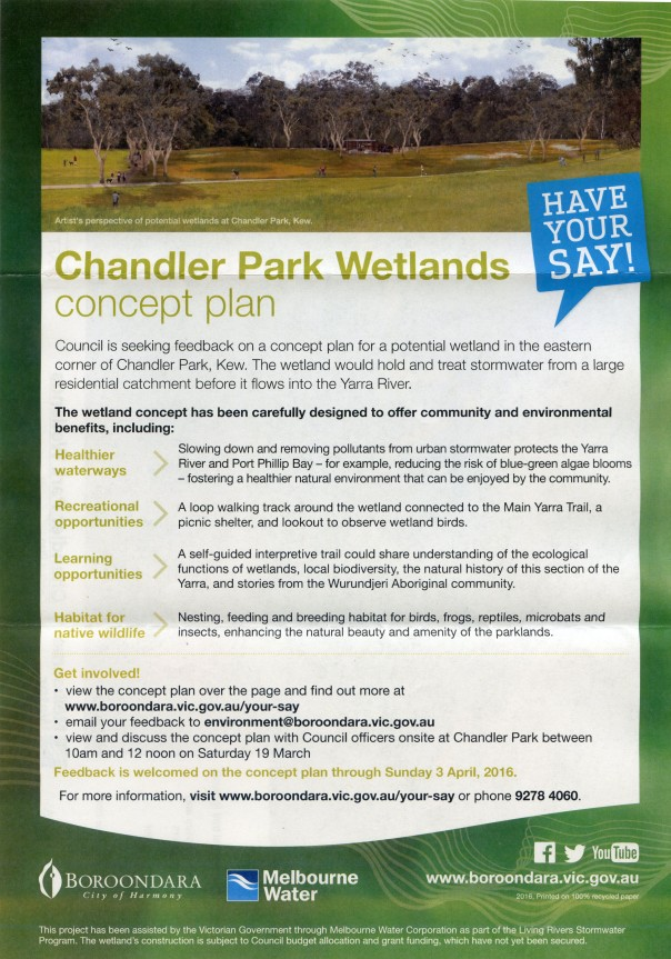 Chandler Wetlands No 3