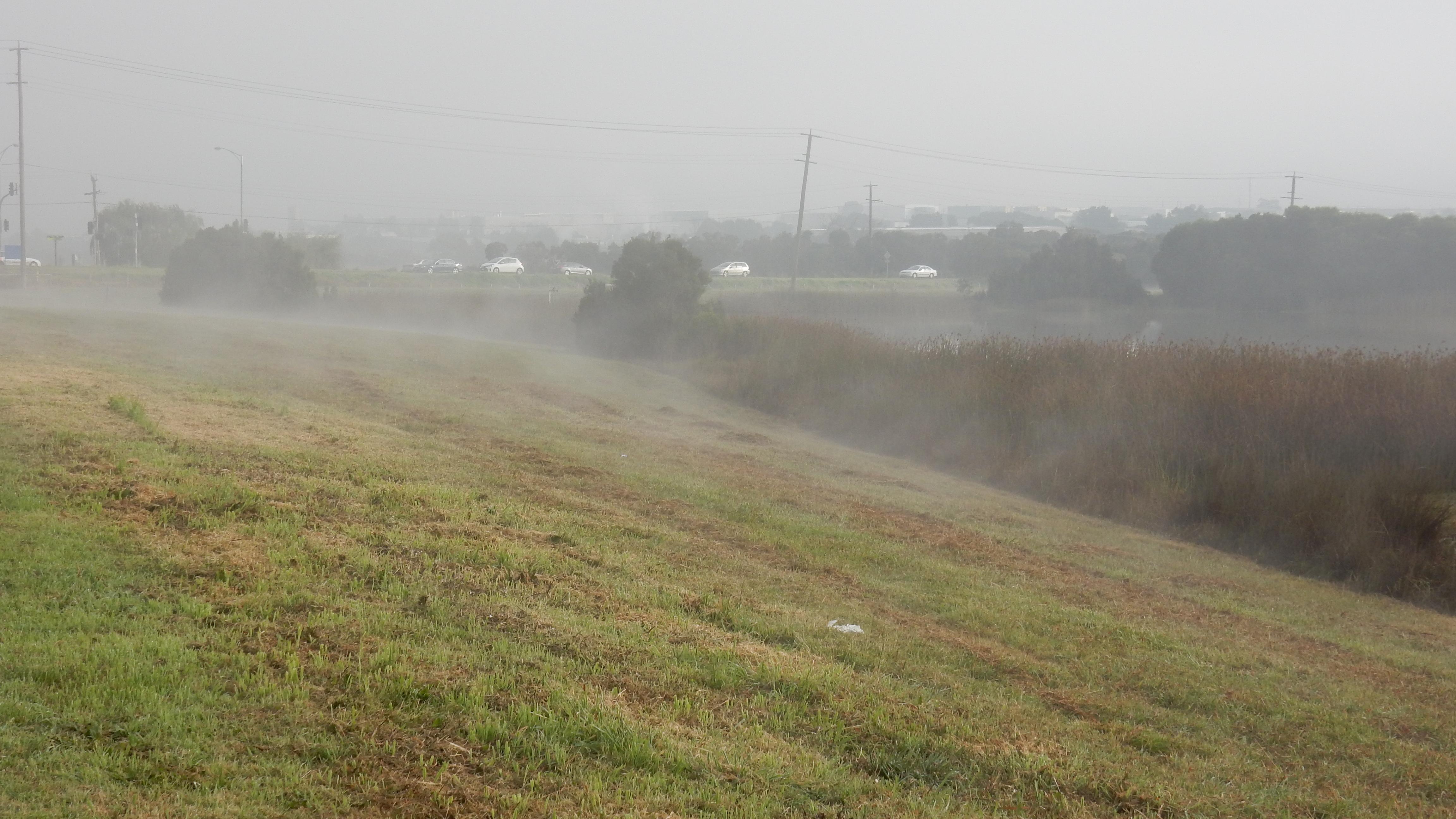 Early morning mist - Diane Tweeddale.JPG