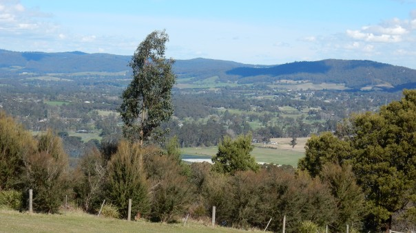 Panorama from picnic spot - D Tweeddale