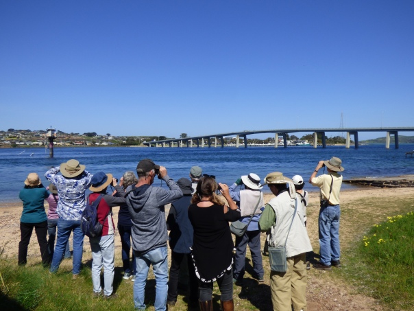 Group with Phillip Island bridge in background - Katmun Loh.JPG